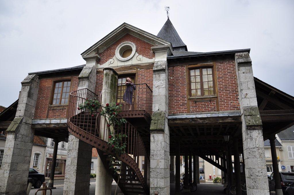 La vieille Halle de Bracieux, et la jeune Chatmouette