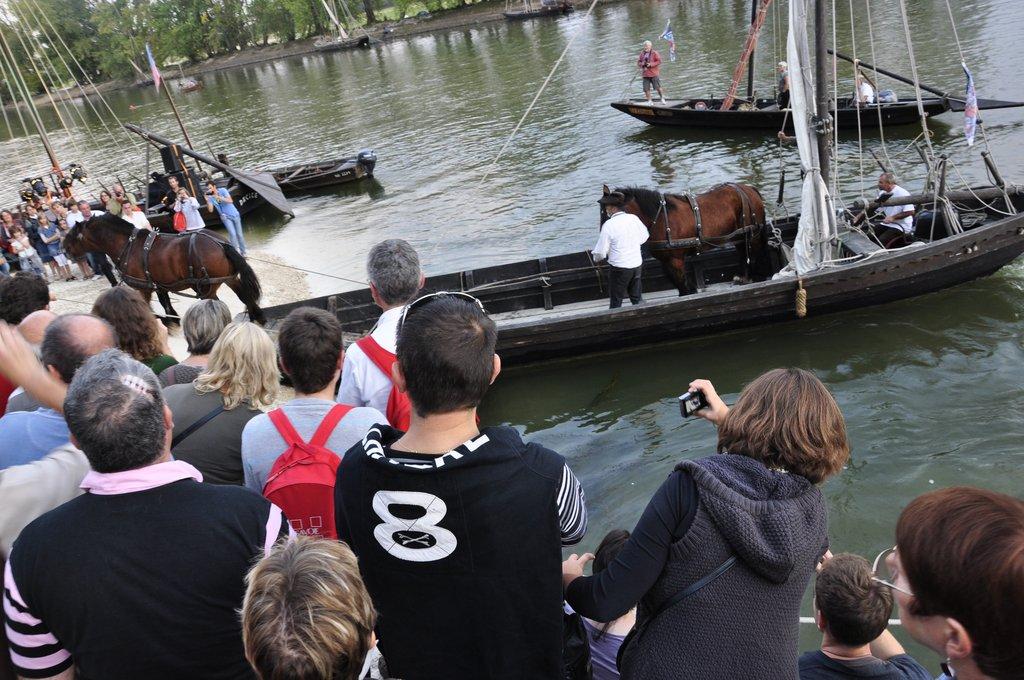 Festival de Loire 2011 : Les chevaux aussi font du bateau