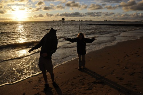 Les Chatmouettes et l'océan