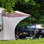 Un hippopotame et un chien comme voisins au camping de Langeais