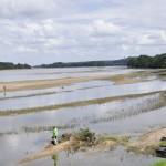 Pêcheurs sur la Loire à le Thoureil